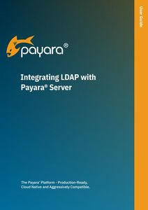 'Integrating LDAP with Payara Sever' user guide front cover.