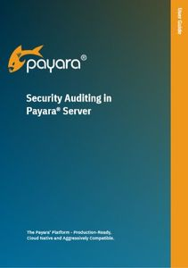 'Security Auditing in Payara Server' User guide front cover.