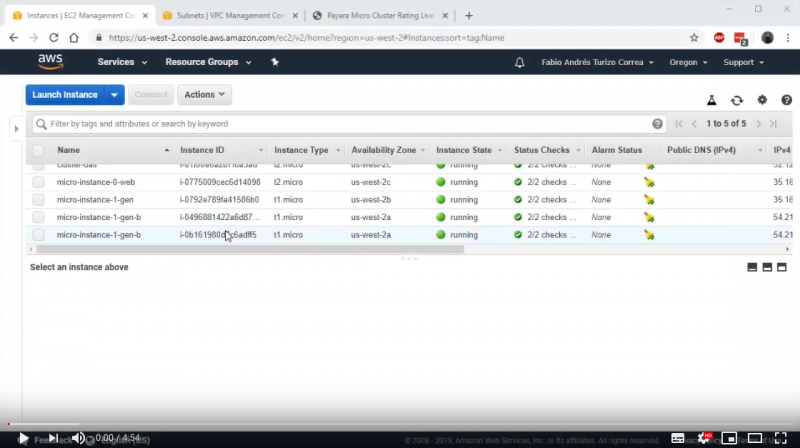 Elastic Clustering with Payara Micro on Amazon AWS - Demo Part 3