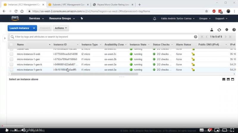 Elastic Clustering with Payara Micro on Amazon AWS - Demo Part 3