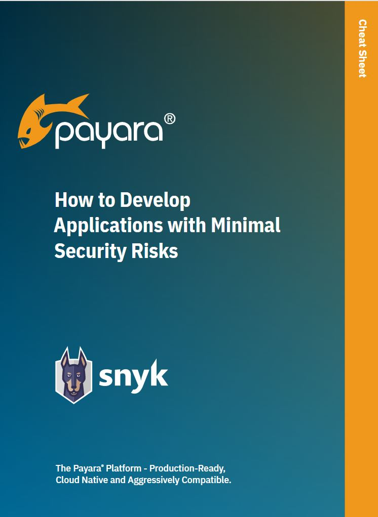 How to Develop Applications with Minimal Security Risks image