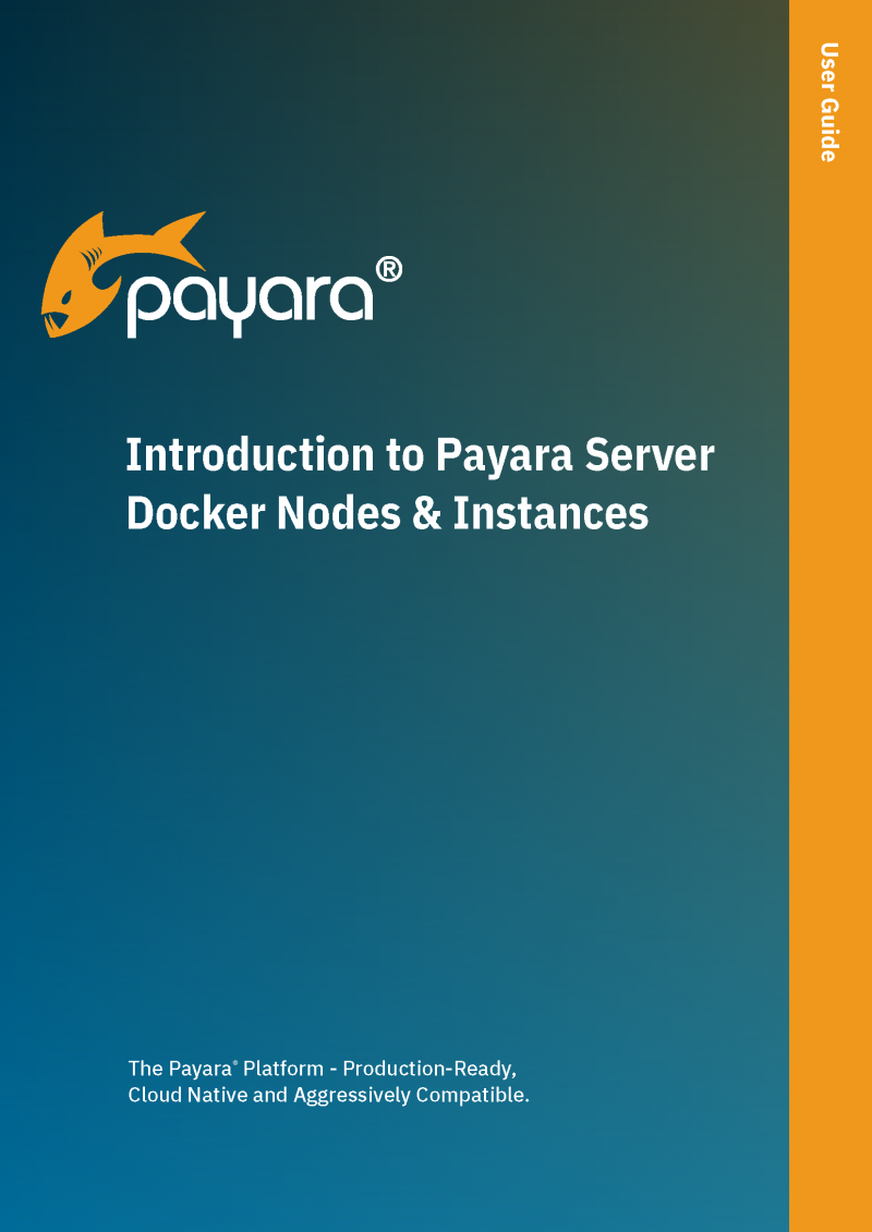 Cover of Introduction to Payara Server Docker Nodes & Instances