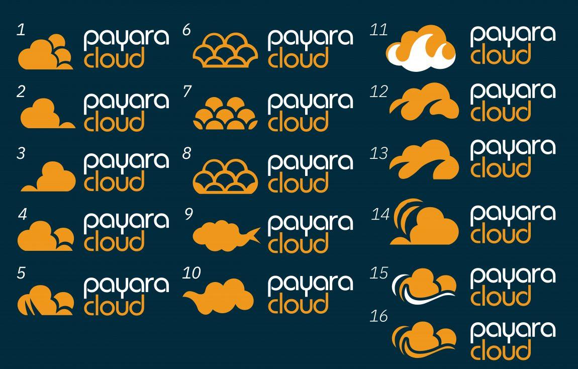 Payara Cloud Logo Shortlist
