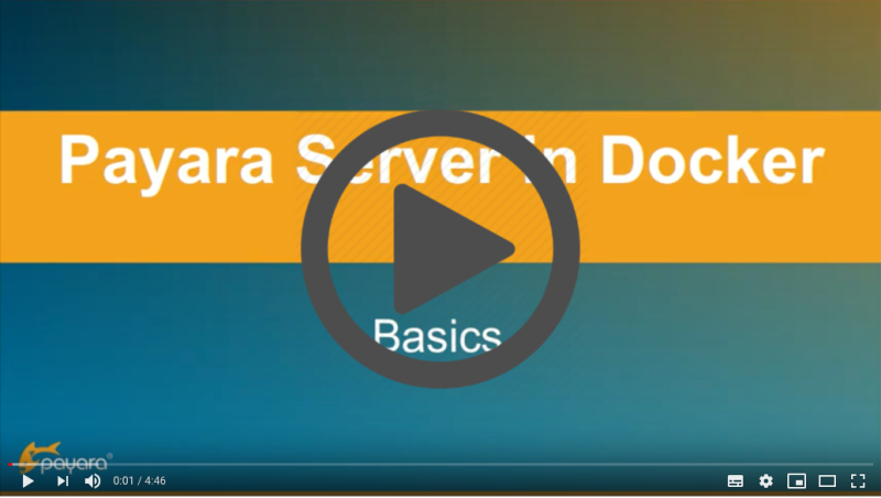 Video link to Payara Server in Docker: Basics.