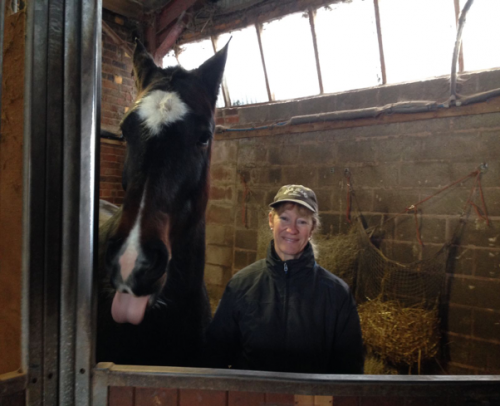 Sara Finance Manager and a Horse