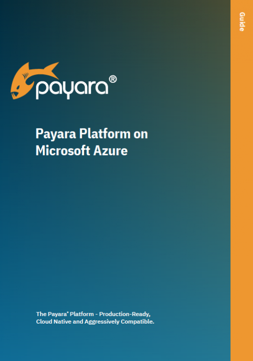 Payara Platform on Microsoft Azure Guide