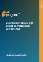 Using Payara Platform with Docker on Amazon AWS guide