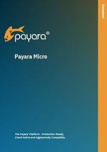 Payara Micro Datasheet