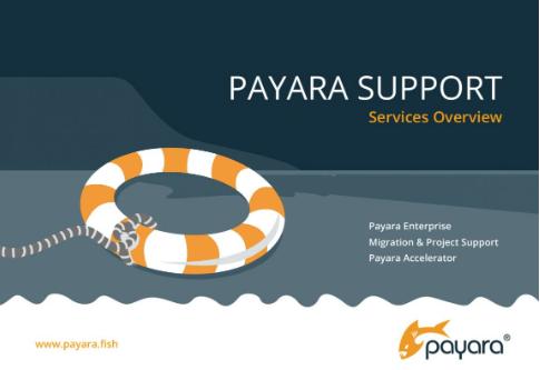 Payara Support Brochure
