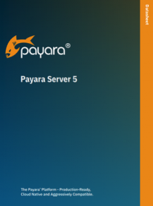 payara server 5 datasheet
