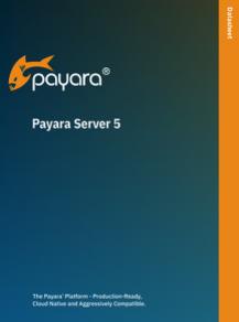 payara server 5 datasheet