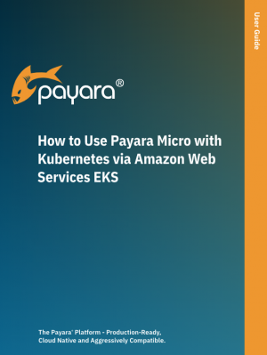 How to use Payara Micro with Kubernetes via Amazon Web Services EKS user guide cover