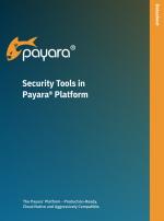 Security Tools in the Payara Platform datasheet