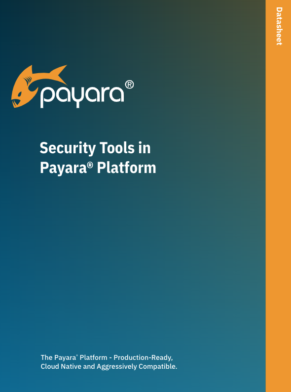 Security Tools in the Payara Platform datasheet