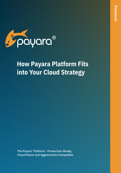 How Payara Platform Fits into your Cloud Strategy