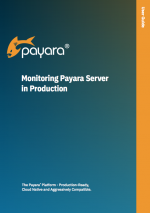 Monitoring Payara Server in production