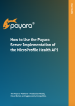 How to Use the Payara Server Implementation of the MicroProfile Health API