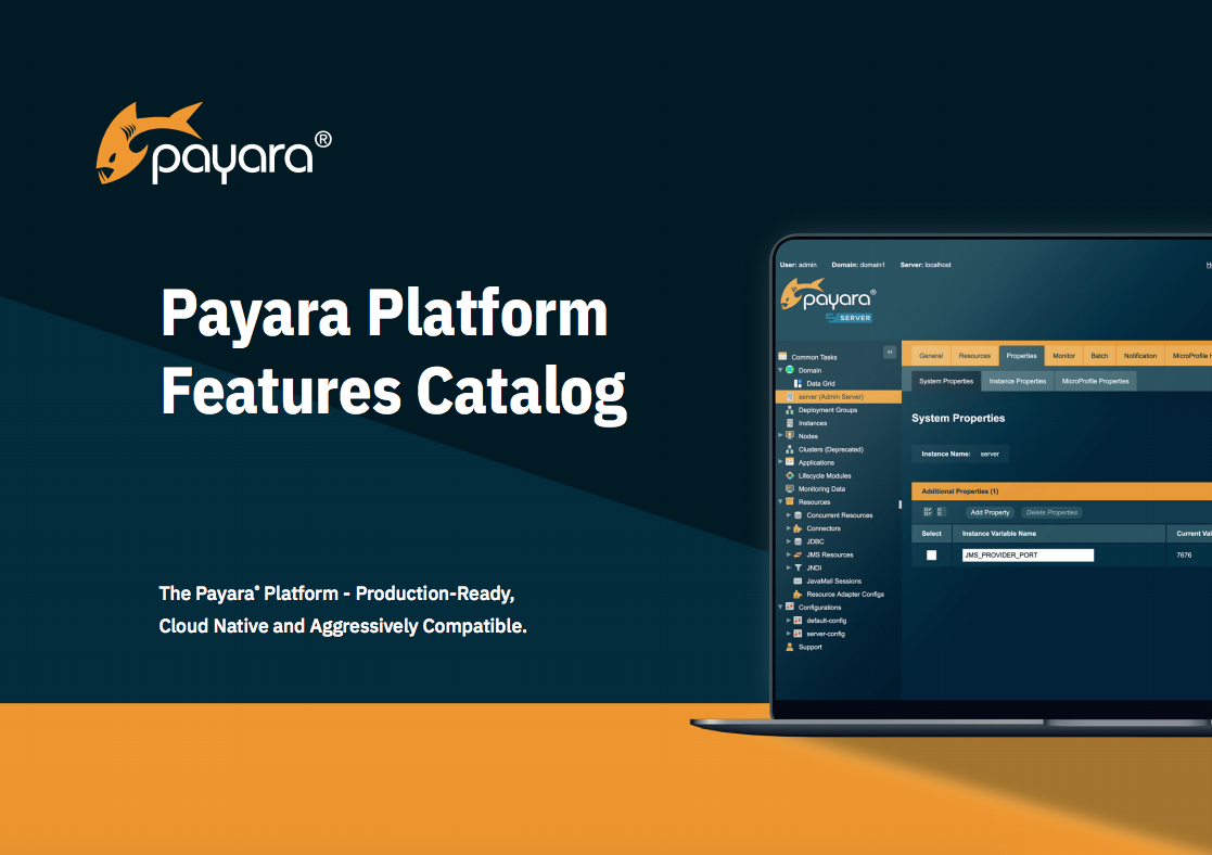 Payara Platform Features Catalog