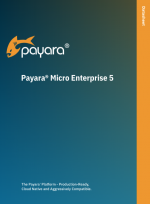 payara micro enterprise datasheet