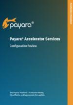 Payara accelerator configuration review