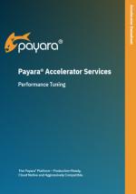 Payara Accelerator Performance Tuning Datasheet