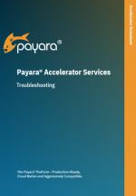 Payara Accelerator Troubleshooting Datasheet