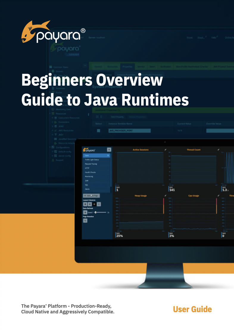 Beginners Overview Guide to Java Runtimes