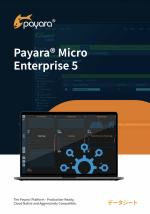 Payara Micro 5 Datasheet Japanese