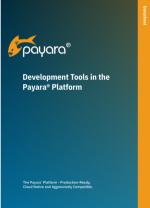 developer tools in the Payara Platform