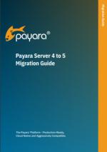 Payara Server 4 to 5 Migration Guide
