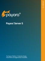 Payara Server 5 Datasheet (Japanese)