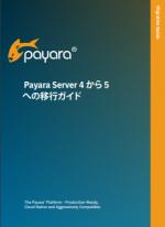 Payara Server 4 to 5 Migration Guide (Japanese)