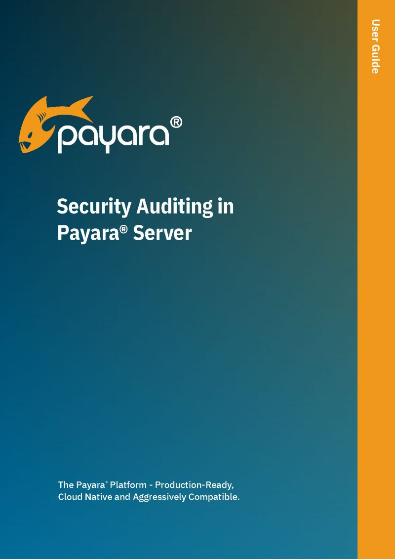 Security Auditing in Payara Server
