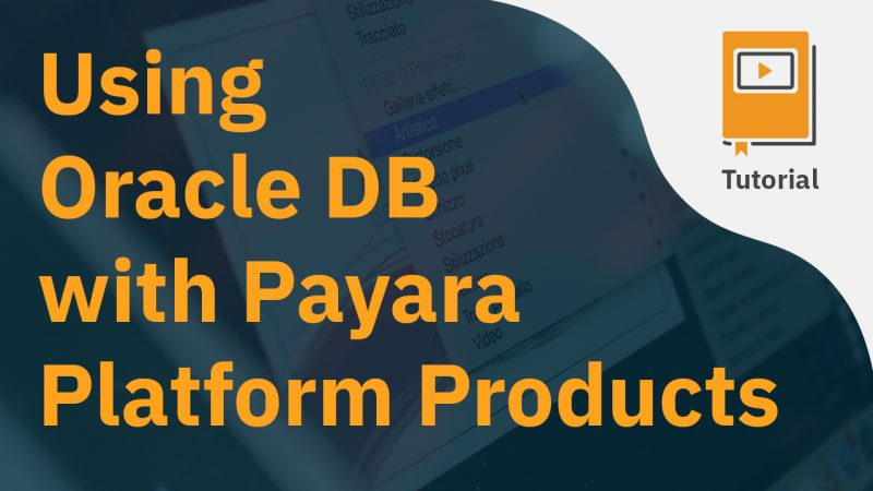 Using Oracle DB with Payara Platform Products