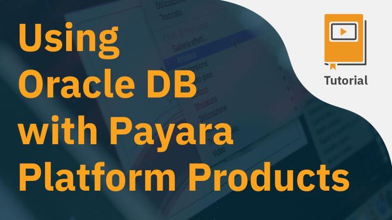 Using Oracle DB with Payara Platform Products