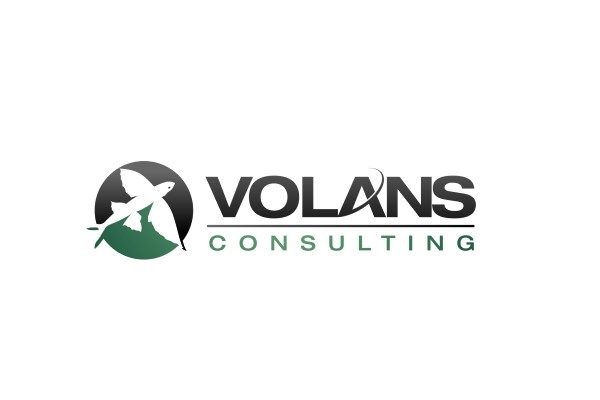 Volans Consulting
