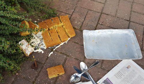 cake dropped into a bush