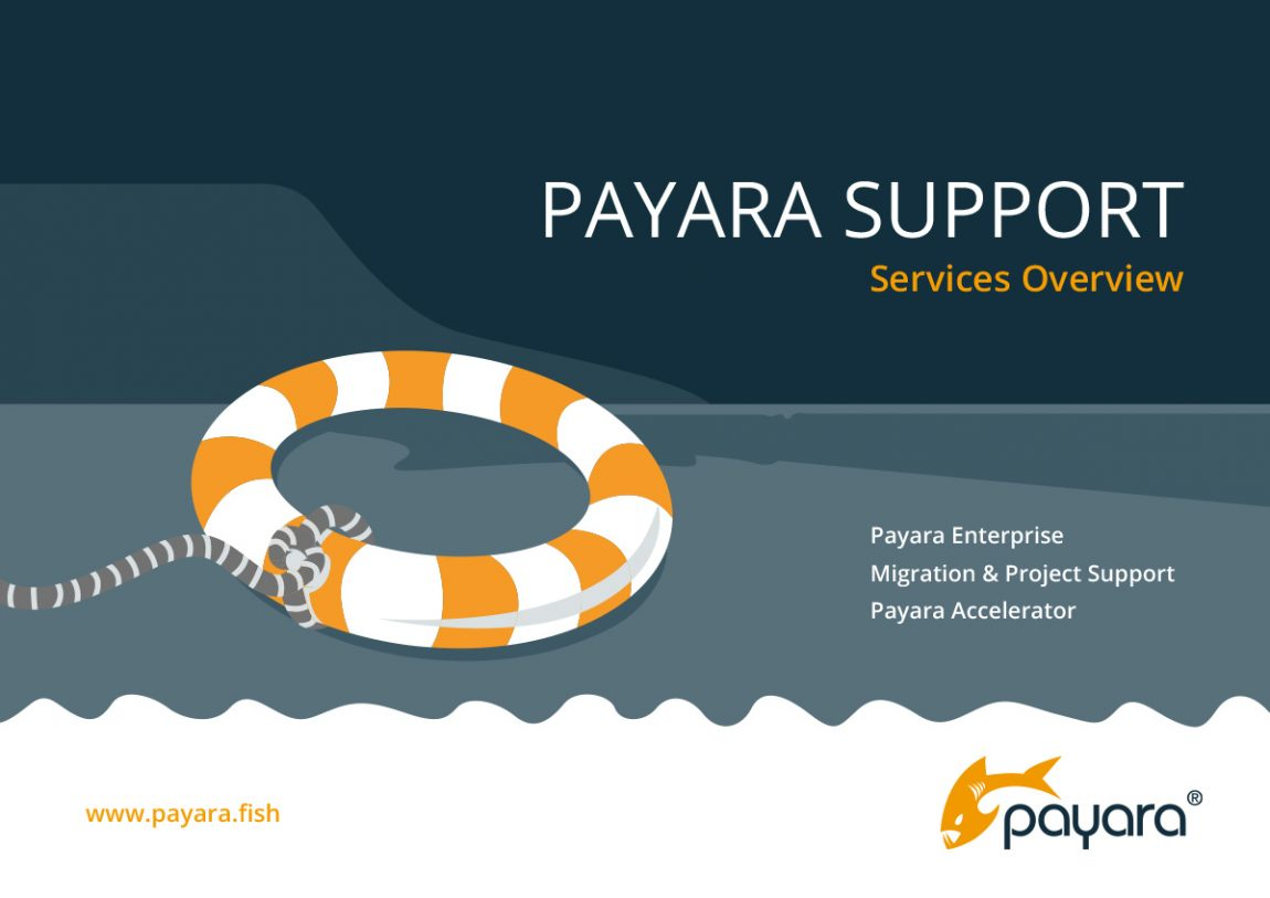 'Payara Support service overview' front cover.