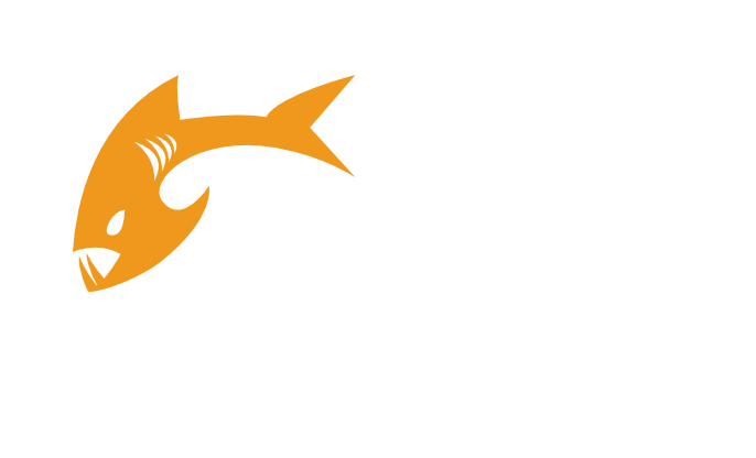 Payara Enterprise