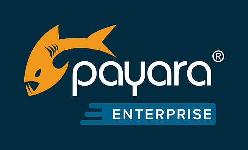 Customers Share Benefits of Payara Enterprise Support