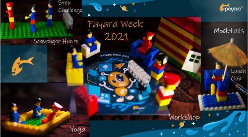 Payara Week 2021: Of-FISH-ally Just as Good Online!