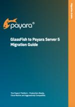 glassfish to payara server 5 guide screenshot