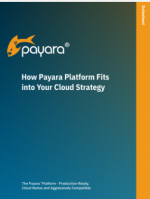 How the Payara Platform Fits into Your Cloud Strategy Datasheet screenshot