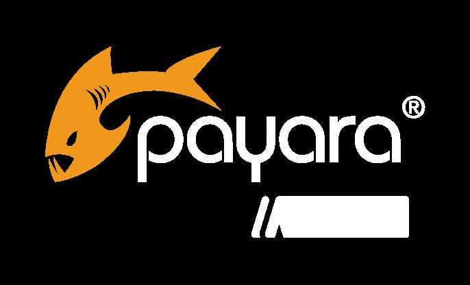 Payara Micro