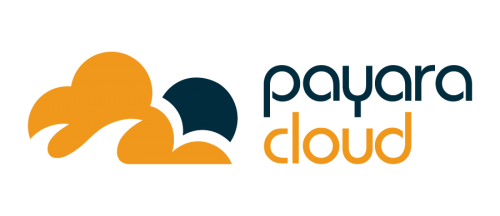 Payara Cloud Logo
