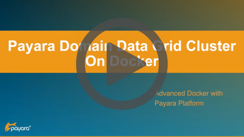 Payara Domain Data Grid Cluster on Docker