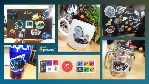 Examples of Payara Stickers