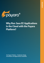 Why Run Java EE Apps in the Cloud with Payara Platform